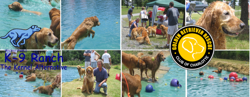 6/1/2019 – Register Now for Dunk Your Dog