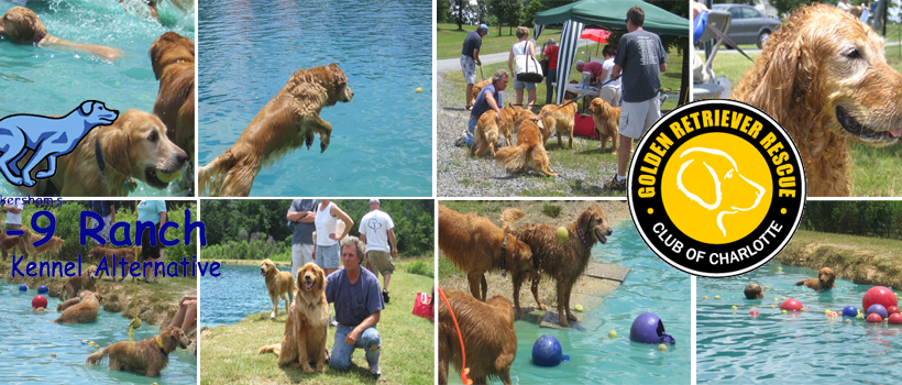6/1/2019 – Registration Now Closed for Dunk Your Dog