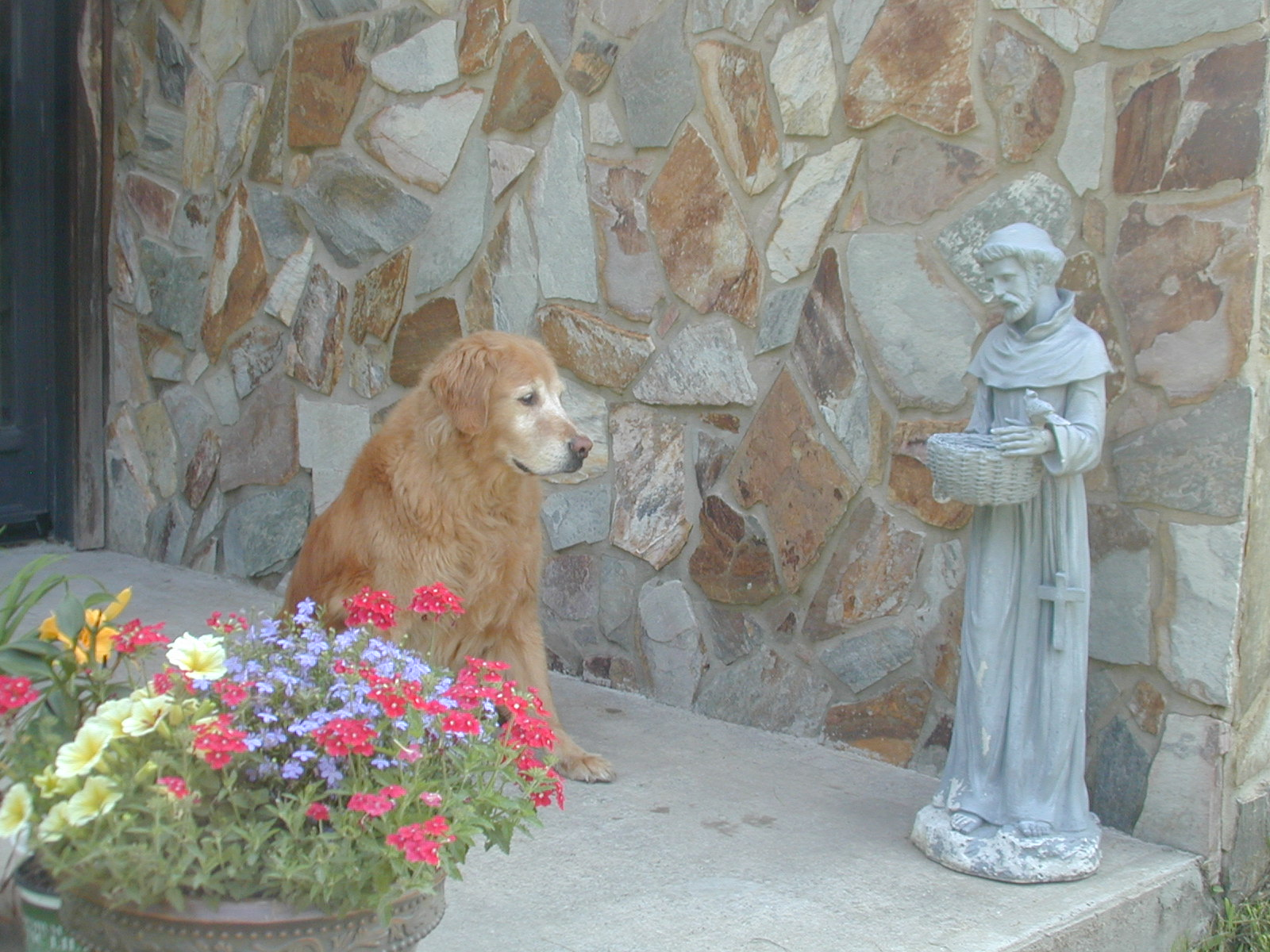Zoey and St Francis