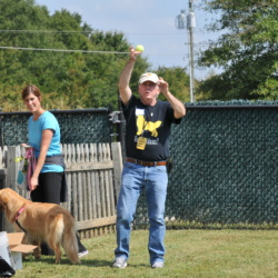 2017 Fall Picnic and Tennis Ball Raffle – Winners and Pictures