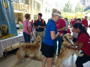 GRRCC at Bank of America Animal Awareness and Adoption Event