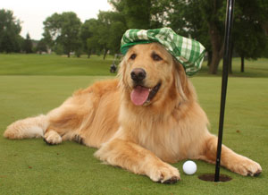 4/6/2019 – Golfing for Goldens Charity Golf Tournament