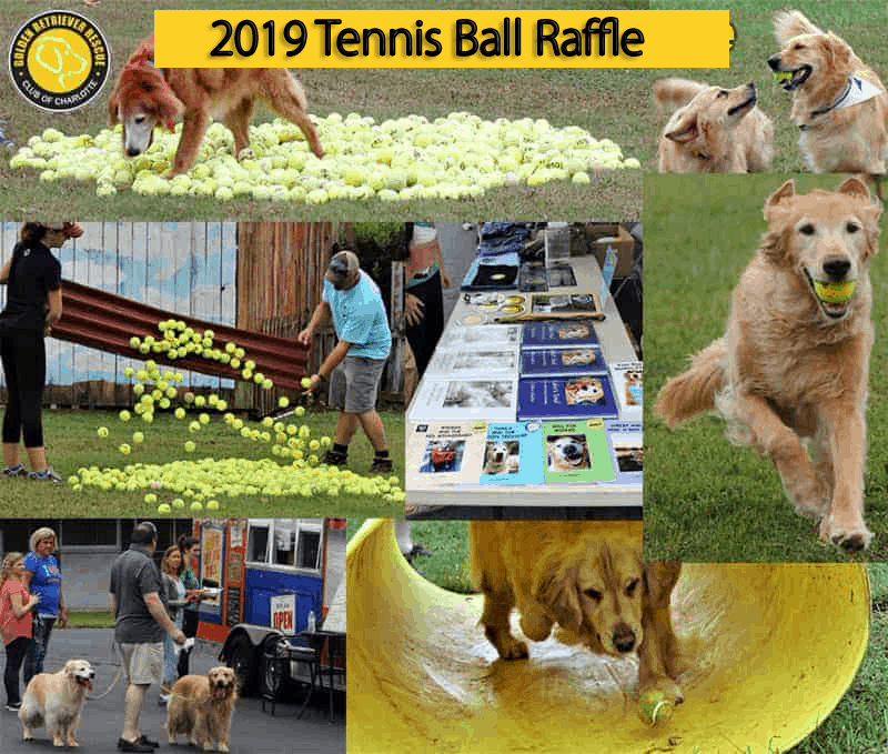 2019 Tennis Ball Raffle